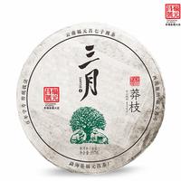 2019年福元昌 三月莽枝 生茶 357克