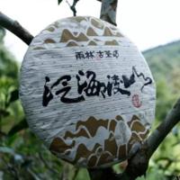 2015年雨林古茶 泛海凌山 生茶 357克